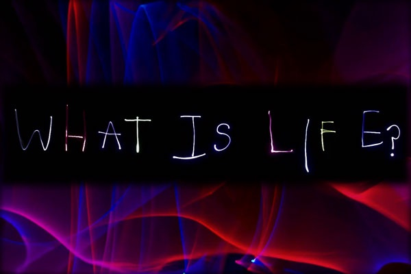 Does Life Have A Name?