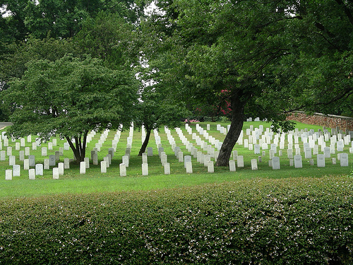 Quotes to Remember Our Fallen Heroes