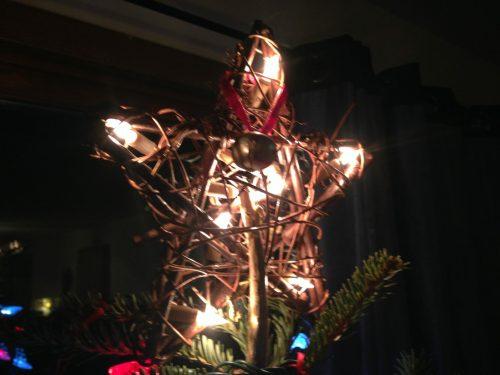 Pine Cones, Rusty Bells, Broken Snowmen, and One Antler Reindeer
