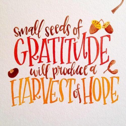 12 Gratitude Quotes